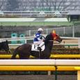 2007年1東京8~ベンケイ(3R3歳未勝利)