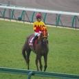 2007年3中山1~フサイチパンドラ(11R日経賞)