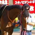 2007年4東京6~メイショウゲンスイ(10R銀蹄ステークス)