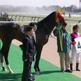 2008年1東京8~ボクノタイヨウ02(3R3歳未勝利)