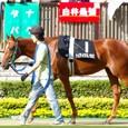 2008年4東京1~ケイアイウミノカミ(9Rプラタナス賞)