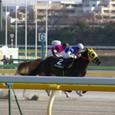 2009年1東京5~ビッグポパイ(10R銀蹄ステークス)