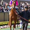 2009年1東京8~メイショウブンブク(2R3歳未勝利)