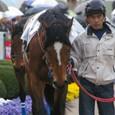 2009年2中山8~メイショウゲンスイ(10R下総ステークス)