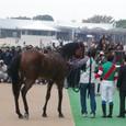 2009年4東京5~エースインザホール02(4R2歳新馬)