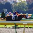 2009年5東京4~ダテノスイミー(2R2歳未勝利)