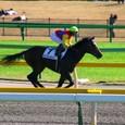 2009年5東京4~ケンプトンパーク(5R2歳新馬)