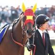 2009年高知~フェラーリピサ01(10R黒船賞)