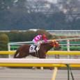 2010年1東京2~ケイアイプラウド01(12R4歳以上1000万下)
