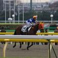 2011年1東京7~タビト(6R3歳500円以下)
