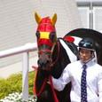 2011年2阪神8~アカネカブリ(5R3歳未勝利)