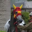 2011年2東京5~ホウショウキング(2R3歳未勝利)