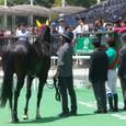 2011年2東京7~カネトシイナーシャ02(3R3歳未勝利)