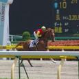 2011年2東京7~ウィンザーフラッグ01(5R3歳未勝利)