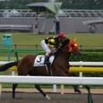 2011年3東京3~ドリームナラキラ(2R3歳未勝利)