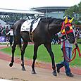 2011年6京都6~カーバ(6R新馬)