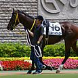 2012年3東京4~メイショウムロト(2R3歳未勝利)