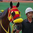 2012年2小倉12~ハニーバニー(1R2歳未勝利)