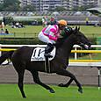 2012年4東京2~ケイアイレーヴェ(5R新馬)