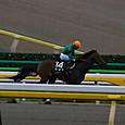 2012年5東京5~キズマ01(9R西湖特別)