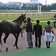 2012年5東京7~ヴィンテージイヤー02(12R3歳上1000万下)