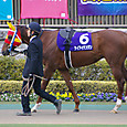 2012年1東京8~ケイアイテンジン(11Rフェブラリーステークス)