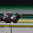 2012年2東京7~ピラミッド(3R3歳未勝利)