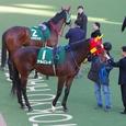 2006年1東京1~アルビレオ02(東京新聞杯)